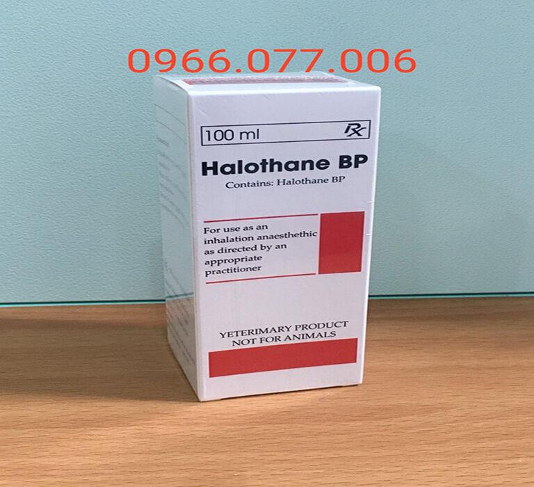 Thuốc mê Halothane gây ngủ nhanh