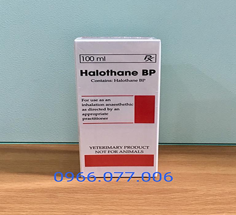 thuốc mê Halothane 100ml