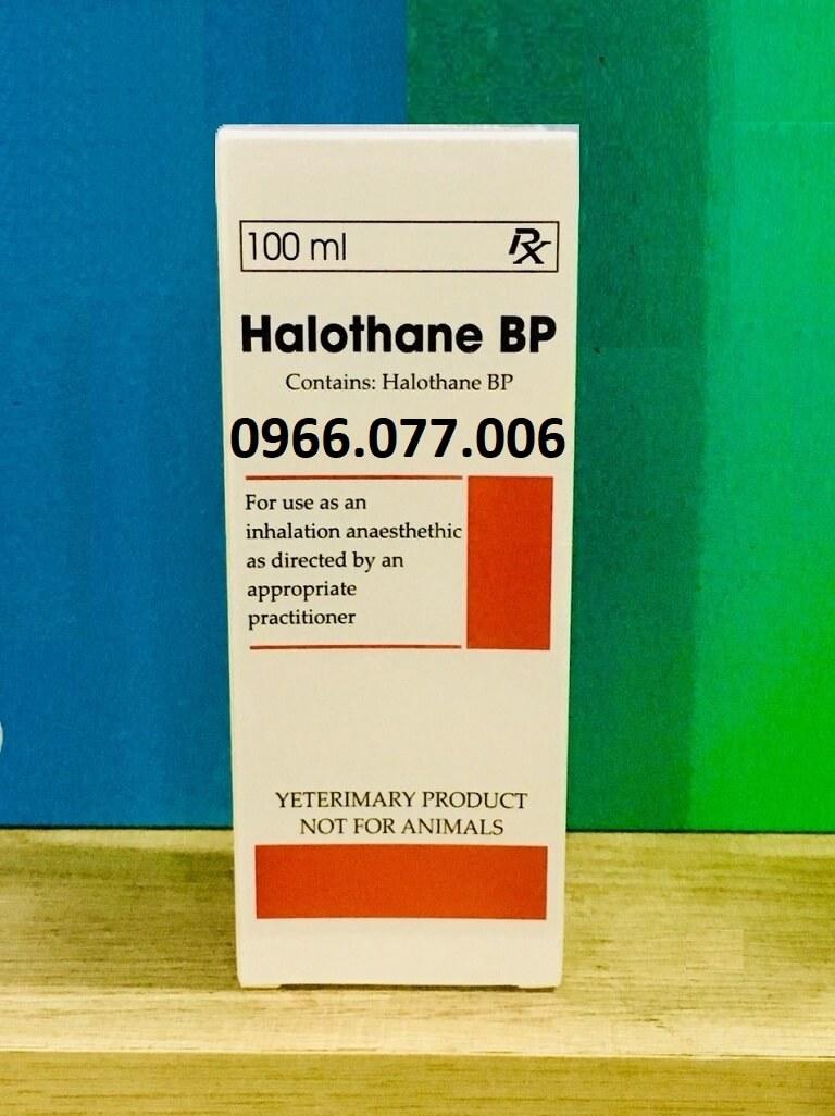 Thuốc gây mê đường hô hấp Halothan