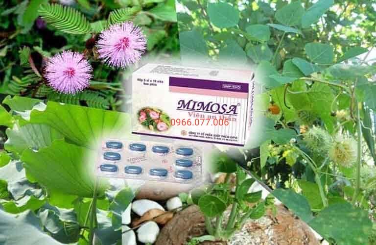 Thành phần thuốc đến từ cây bình vôi, lá sen, trinh nữ, lạc tiên, vông nem